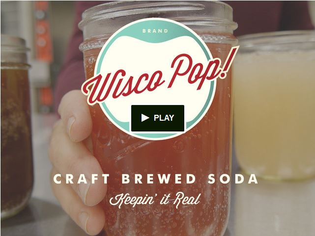 Screen capture from the Wisco Pop Kickstarter page.